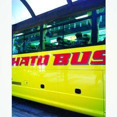 [はとバス*2010/08/21]    おはと〜٩(๑❛▿❛ ॢ̩)    はとバスの日帰りツアー