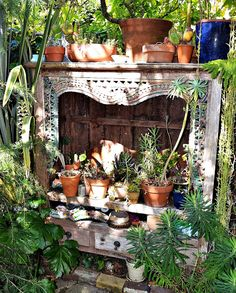 The Outlaw Gardener: The Organic Mechanics' Paradise Garden. Plants arranged on an old mantlepiece.