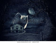 Dark and scary Haunted Mansion with owl in flight at full moon Poster 20 Years Of Marriage, Haunted Mansion, Sounds Like, Full Moon, How To Fall Asleep, Scary, Death, The Incredibles, Mansions
