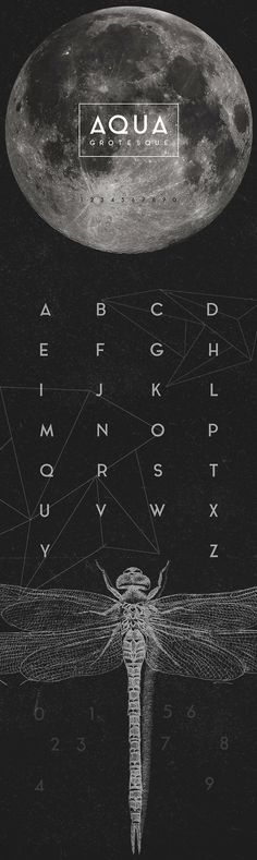 Aqua Grotesque - Free Font | Web Design Freebies