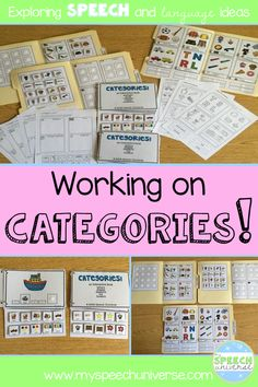 Are you looking for some fun activities to work on categorization in your speech therapy sessions? This packet has worksheets, file folders games, and interactive books that all target categories!