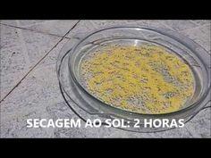ÓTIMO SISTEMA PARA SEPARAR MACHOS - YouTube