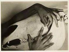 Georgia O'Keeffe - Hands and Horse Skull Alfred Stieglitz 1931 Alfred Stieglitz, Louise Bourgeois, Georgia O'keeffe, Horse Skull, O Keeffe, New York Art, American Artists, Beautiful Hands, Great Artists