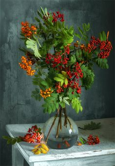 a rowan bouquet. berries, a bunch of mountain ash Flower Vases, Flower Art, Flower Arrangements, Flowers Nature, Exotic Flowers, Autumn Scenes, Beautiful Flowers Wallpapers, Acrylic Painting Techniques, Acrylic Flowers