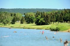 Elkwater Lake, Alberta - Canada Cypress Hill, Come And See, Alberta Canada, Canada Travel, Golf Courses, Addiction, Earth, Seasons, Places
