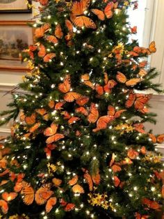 Chic Christmas 12 Orange Monarch Butterfly Ornament Decorations Floral Tree Wreaths Centerpiece Shabby Rustic French Country
