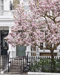 South Kensington London