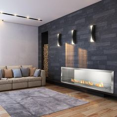 Ethanol Firebox - Ignis Ethanol Firebox - Built-in Single Sided Ventless Fireplace Modern Fireplace, Fireplace Design, Fireplace Ideas, Standing Fireplace, Ethanol Fireplace, Fireplaces, Fireplace Inserts, Luxurious Bedrooms, Modern House Design