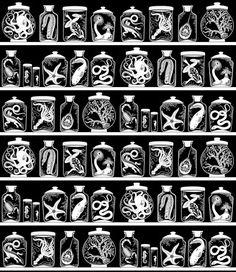 """Specimen Jars print (artist uncredited, I believe it's """"Sakura Snow""""'s work)"""