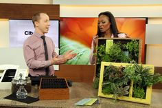Growing up: DIY vertical planters | Cityline
