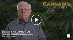 Cannabis & You - A Story of Life - Cannabis Is In Your DNA! Cannabis is a part of you, your body is hot wired to receive cannabinoids as you have receptors all Education Center, Medical Cannabis, Superfoods, Dna, Knowledge, Public, Plant, Hemp, Health