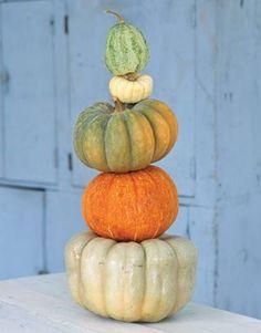 Pumpkin tower country living