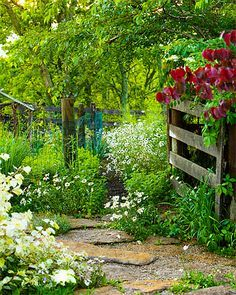 Quick Tips To Help You Get More From Your Garden * Want to know more, click on the image.