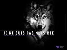 campagne VESEA animaux exploitation maltraitance