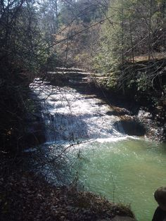 Kinlock Falls, Bankhead Forest, Alabama.  My favorite place to swim growing up. It was 10 minutes from my house.