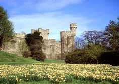 Penrhyn Castle in North Wales! We're going to rappel down one of the towers! #p2ppacking