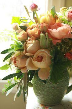 Caramel Antique garden roses by Erin Benzakein / Floret Flower Farm, via Flickr
