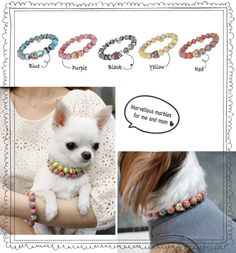 The Marvelous Couple Set by Louisdog features a sturdy stretch cord necklace & bracelet featuring agate pattern stones with a metal charm and signature crystal pendent. Yorkshire Terrier, Daisy Mae, Designer Dog Clothes, Collar And Leash, Dog Collars, Crystal Magic, Dog Id Tags, Dog Carrier, Dog Costumes