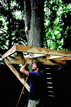 How to Build a Treehouse in the Backyard  - PopularMechanics.com