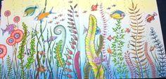 colored by Peta Hewitt