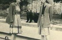 65 lat zoo w polskim Wrocławiu