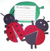 ladybug glyph and ladybug life cycle