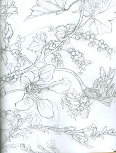 All sizes | flower drawing | Flickr - Photo Sharing!