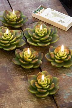 Succulent candles divinespirit3:  (via Illuminations…..)