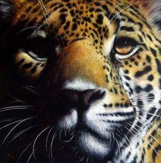 Chiaroscuro selvaggio - acrylic on canvas   Wildlife Art by Roberto Rizzo   www.robertorizzo.com