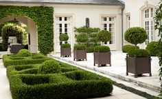 formal - topiary -Design Chic