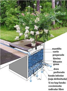 esquema-jardinera
