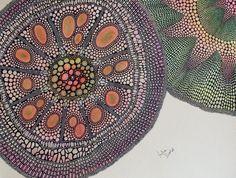 Julie Dodd, environmental artist, installation artist, printmaker and bookmaker Abstract Pattern, Pattern Art, Microscopic Photography, Microscopic Images, Bio Art, Organic Art, Creative Textiles, Artistic Installation, Acrylic Canvas
