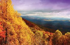 Boone, North Carolina - heading up here in a few weeks to see the fall leaves! can not wait!