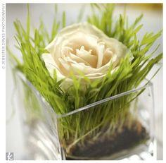 1.- Centros de Mesas con Rosas