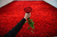 arranjo de rosas | Duesarte Blog