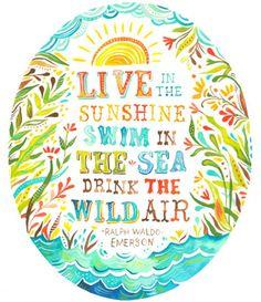 Live in the Sunshine ☀ Swim in the Sea 🏊 Drink the Wild Air 🌀 - Ralph Waldo Emerson