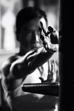 Donnie Yen in a great shot working the Wing Chun dummy