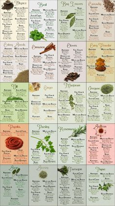 Herb and spices cheat sheet. Good for all those herbs I have less experience using!