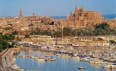 36 Hours in... Palma