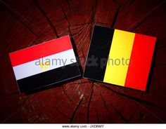 Egyptian flag with Belgian flag on a tree stump isolated - Stock Image