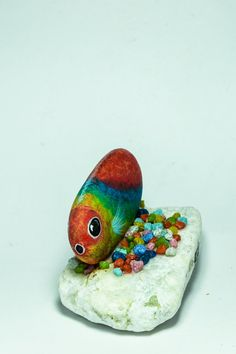 Rainbow fishhandpainted rockpainting acrylic by ClarArtNatura