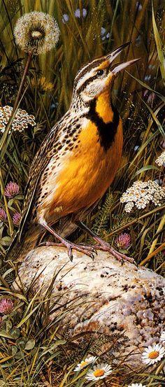 Meadowlark, by Carl Brenders (Belgian, b. 1937)