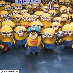 Minions blowing raspberries - Find and Share funny animated gifs Minion Gif, Minion Rock, Happy Minions, Minion Jokes, Minions Despicable Me, My Minion, Minions 2014, Animiertes Gif, Animated Gif