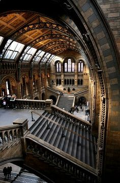 Entrance Hall to the Natural History Museum, London. Romanesque Revival but with modern materials and structures such as terracotta and striking steel ribs to the roof. All decorated with natural imagery.