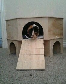 2 STOREY CORNER PLAY TUNNEL/SHELTER FOR GUINEA PIG/SMALL RABBIT   Pet Supplies, Small Animal Supplies, Exercise & Toys   eBay!