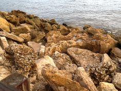 Rocks along the jetty Sanibel