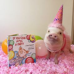 The only way to serve pork . Give a pig a party! Cute Baby Pigs, Cute Piglets, Cute Babies, This Little Piggy, Little Pigs, Baby Animals, Funny Animals, Cute Animals, Pocket Pig