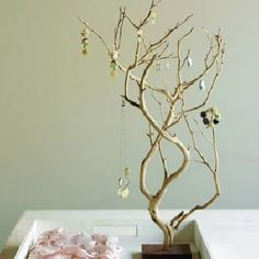 Manzanita branches are a great shape, and are strong. Perfect for a jewelery holder!