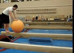 Share this Balanced on the ball falls on the balls Animated GIF with everyone. Gif4Share is best source of Funny GIFs, Cats GIFs, Reactions GIFs to Share on social networks and chat.