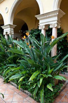 Les jardins | Villa & Jardins Ephrussi de Rothschild : Palais de la côte d'Azur, Saint-Jean-Cap-Ferrat - Gérés par Culturespaces